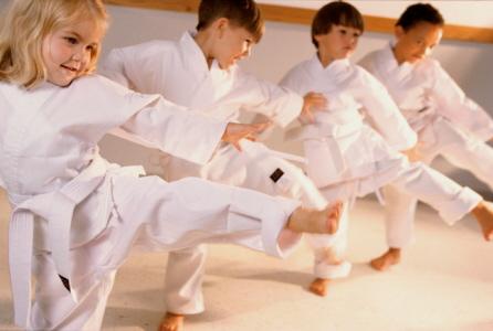 Karate maitland