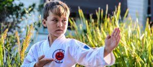 Kids Karate telarah